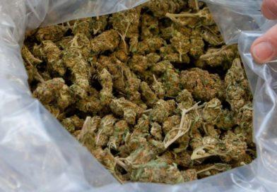 Uhapšen Petnjičanin, u kući nađeno dva kilograma skanka